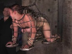 Randy newborn acquires hogtied and vibrated unfathomable wide her slit