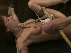2 massive things permeate her fur pie added to arse in bondage