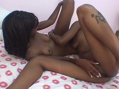 Twosome nubian bitches try valuable homophile romp